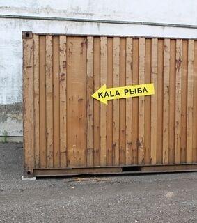 Magnetkleebis Kala