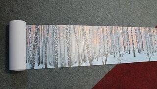 PVC banneri metsä