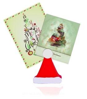 Memohoidja Santa