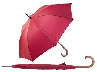 automatic umbrella 3. picture