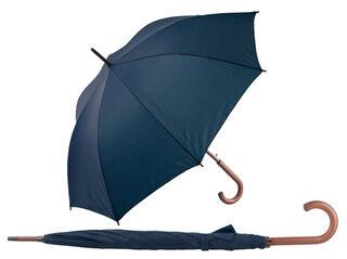automatic umbrella 4. picture